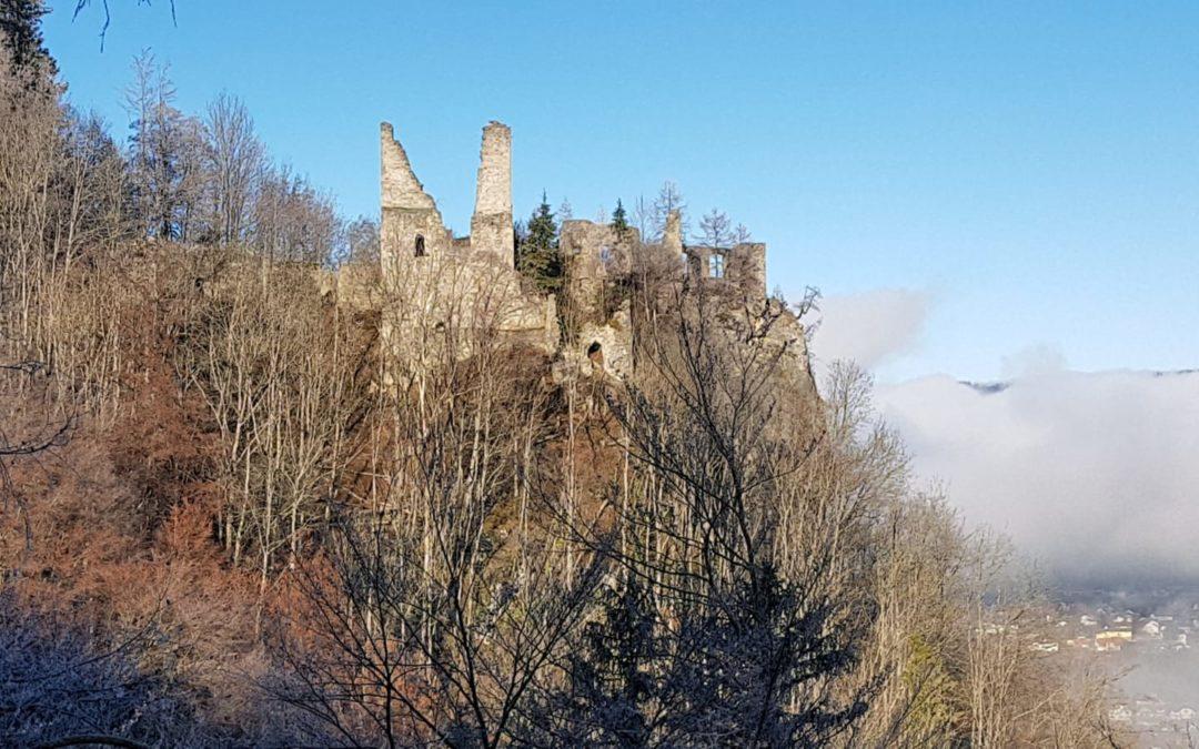 Freilegung Ruine